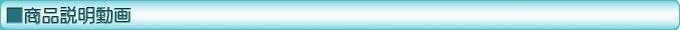 DENSO ダイアグテスター-DST-i 商品説明動画