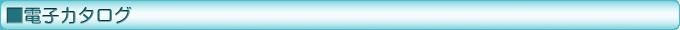 DENSO ダイアグテスター-DST-i 電子カタログ